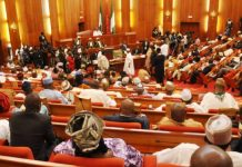 Monthly Salary of Nigerian Senators