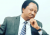 Shehu Sani Sends Strong Warning To Sultan Of Sokoto