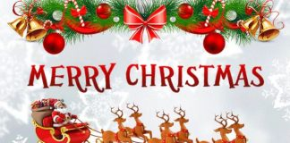 150 Merry Christmas Messages, Wishes To Send To Friends, Family