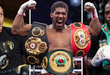 Tyson Fury Beat Deontay Wilder, Anthony Joshua